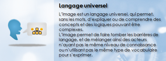 VISIUM360, Langage universel, Visualiser la complexité, Vocabulaire visuel